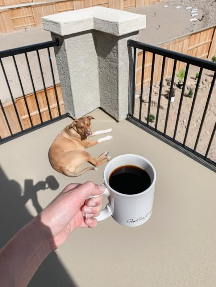 Sunshine and coffee with our pup Abby on our balacony