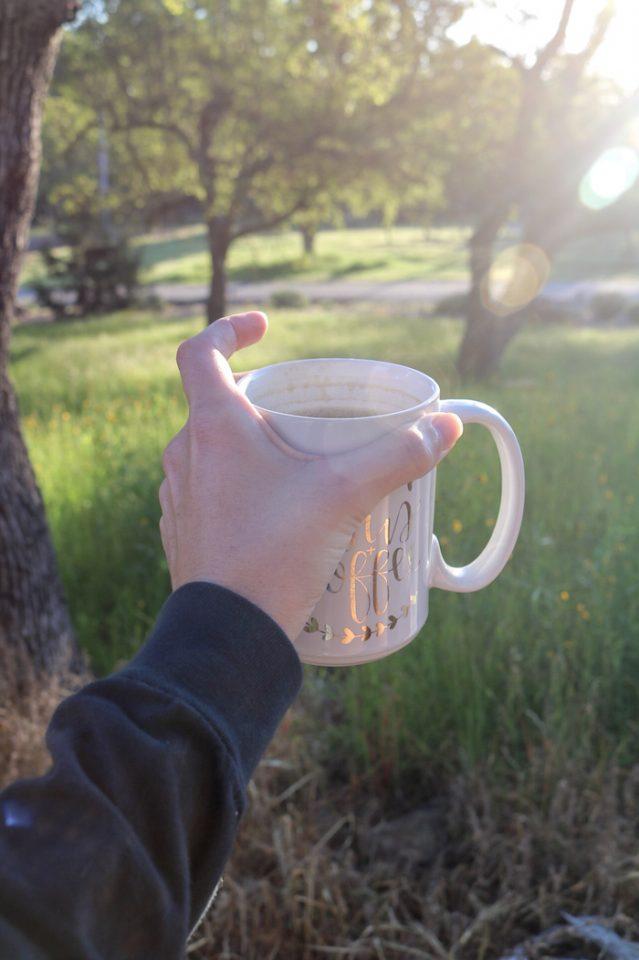 Coffee Outside-Dark Roast with hazelnut Nut Pods creamer